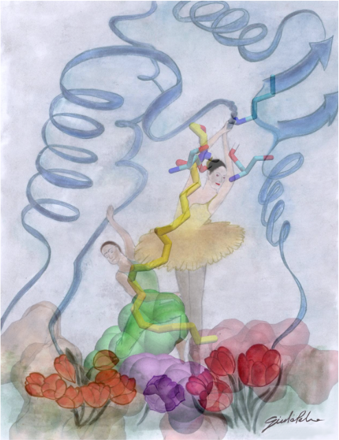 Anandamide translocation within FAAH active site occurs like a Ballerina in a theatre